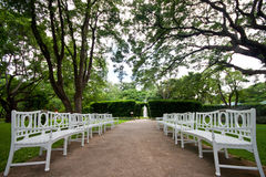 White wooden bench in peaceful tropical park Royalty Free Stock Images