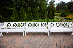 White Wooden Benches in the park, summer day Royalty Free Stock Photo