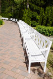 White Wooden Benches in the park, summer day Royalty Free Stock Photography