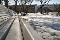 White wooden benches standing in a city park in the trees on whi. Ch the shadow falls on the melting snow on the background of old houses and blue sky, spring Royalty Free Stock Photos