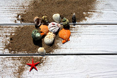 White wooden board with sand and shells. Summer time stock photos