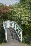 White wooden bridge with green trees around it. In the summer day Stock Photo