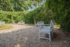 White wooden chair in the garden Stock Photography