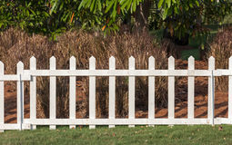 White wooden fence in farmland marks for land property and dry t Royalty Free Stock Images