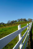 White Wooden Fence And Vineyard. A wood fence separating a vineyard from the public road Stock Photography