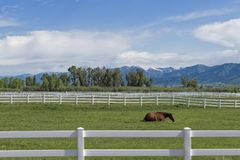White Wooden Fence in Wyoming Stock Photos