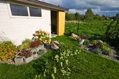White wooden garden shed or hut with flowers and plants Stock Photo