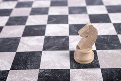 White wooden knight on chessboard. White wooden knight standing on chessboard Royalty Free Stock Images