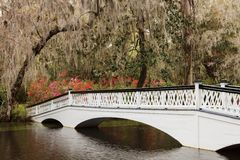 Ornamental White Bridge Magnolia Plantation SC Royalty Free Stock Photo