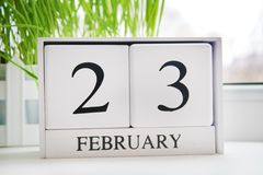 White wooden perpetual calendar with the date of February 23 at the window. Defender of the Fatherland Day. Grass. White wooden perpetual calendar with the date Royalty Free Stock Photo