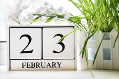 White wooden perpetual calendar with the date of February 23 at the window. Defender of the Fatherland Day. Grass. White wooden perpetual calendar with the date Stock Images