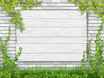 White wooden sign tree branch white brick wall Stock Photography