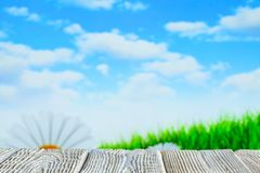 Wooden table with free space on nature background - flowers, lawn and blue sky stock photos