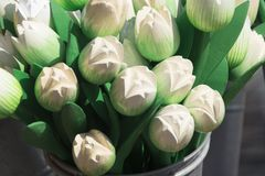 White wooden tulips in metal bucket. souvenir in The Netherlands royalty free stock photography