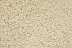White wool texture Stock Image