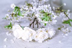 White wreath with cherry blossom. White wreath  cherry blossom. Flower crown Stock Images