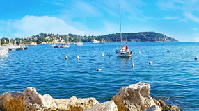 The white yacht in Darse harbor Royalty Free Stock Photo