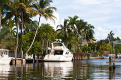 White Yacht Stock Images