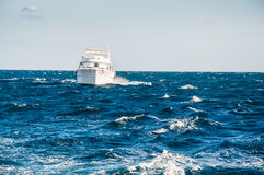 White yacht in the red sea Royalty Free Stock Image