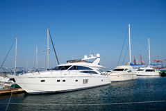 White yachts on an anchor. In harbour Stock Image