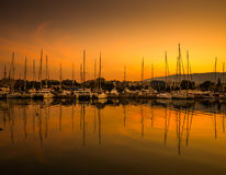 White yachts in the bay of Athens Royalty Free Stock Photo