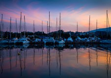 White yachts in the bay of Athens Royalty Free Stock Image