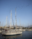 White yachts on blue sky Stock Images