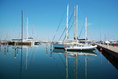 White yachts in the port waiting. Misano Adriatico, Emilia Romagna, Italy.  royalty free stock photo