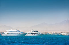 White yachts in the red sea Stock Photo