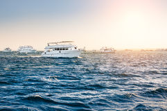 White yachts in the red sea Stock Photography