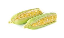 White and yellow corn with shell on white Royalty Free Stock Photography