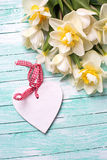 White  and yellow daffodils flowers and decorative heart  on tur Stock Image