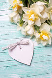 White  and yellow daffodils flowers and decorative heart Royalty Free Stock Photography