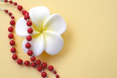White with yellow flower and bright red coral beads with silver accents on a yellow background stock photo