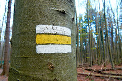 White and yellow mark of hiking trail painted on a tree in a forest. Royalty Free Stock Photography