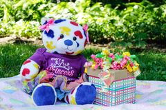 White, Yellow, Red, and Blue Teddy Bear Beside Gift Box royalty free stock photos