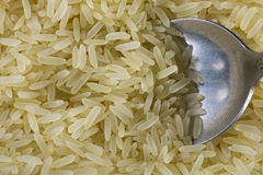 White and yellow rice grains close-up Royalty Free Stock Image