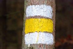 White-yellow-white painted marker Stock Photo