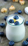 White yogurt with blueberries in glass bowl. Stock Images