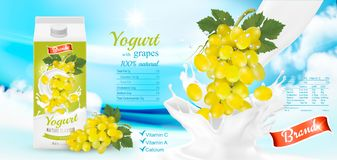 White yogurt with fresh grapes in box. Royalty Free Stock Photography