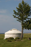 White yurt Stock Image