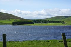 Whiteadder Reservoir, East Lothian, Scotland. A view over Whiteadder Reservoir towards a farmhouse and small conifer plantation in the Lammermuir Hills, East Royalty Free Stock Photography