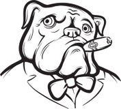 Whiteboard drawing - Old English Bulldog with Cigar Stock Photography