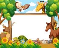 Whiteboard met dieren in bos Royalty-vrije Stock Fotografie