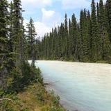 Whitecolored Kiking Horse River Stock Image