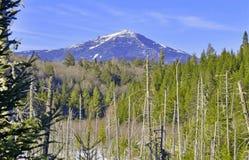 Whiteface-Berg, Adirondacks Lizenzfreie Stockbilder
