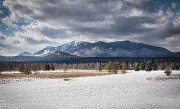 Whiteface góra w zimie Zdjęcia Stock