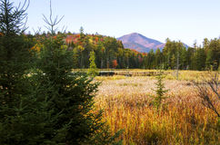 Whiteface mountain. In Adirondacks with wetland in foreground at sunse stock image