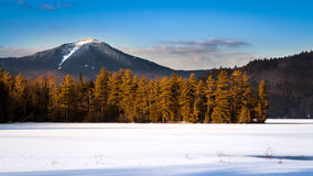 Whiteface mountain peak Royalty Free Stock Photo