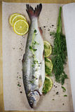 Whitefish. Fresh Fish with Lemon and Herbs Royalty Free Stock Images